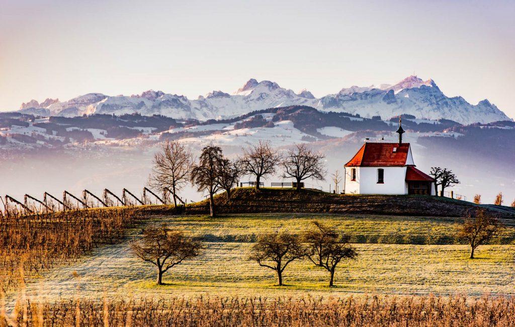Phototree_Patrick_Kunkel_Lindau_Bodensee_001